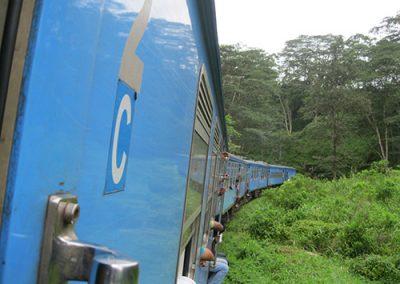 DsynitTrip2013@Badulu-Train-2